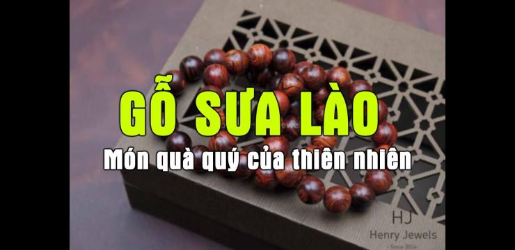 Gỗ sưa Lào - món quà quý của thiên nhiên