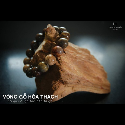 Vòng gỗ hóa thạch tự nhiên