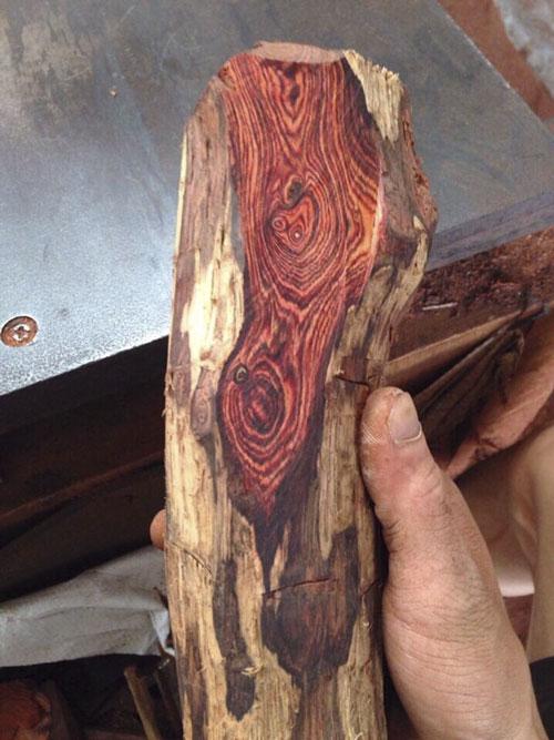 gỗ sưa lào